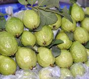 Fresh guavas Royalty Free Stock Photos