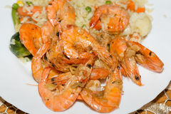 Fresh gulf shrimps Royalty Free Stock Images