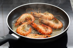 Fresh gulf shrimps fried in olive oil Royalty Free Stock Photo