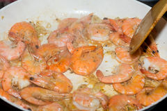 Fresh gulf shrimps Stock Photography