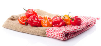 Fresh habanero peppers on burlap Royalty Free Stock Photos