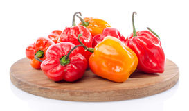 Fresh habanero peppers on cutting board Stock Photography