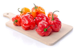 Fresh habanero peppers on cutting board Royalty Free Stock Photography
