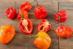 Fresh habanero peppers Royalty Free Stock Image