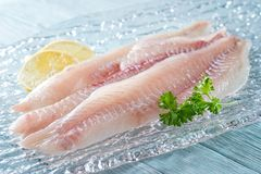 Fresh Haddock Fillets. On glass plate with lemon and parsley royalty free stock image