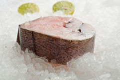 Fresh hake on ice Stock Photography