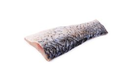 Fresh half of carp fillet. Stock Photos