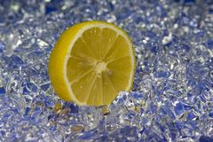 Citron. Fresh half citron on cold ice on blue Royalty Free Stock Photo