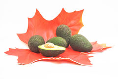 Fresh half cut and group of avocado Royalty Free Stock Images