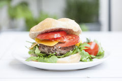 Fresh hamburger. Fresh and juicy hamburger with cracky aragula, salad, tomato, cheddar in a roll on a white dish stock image