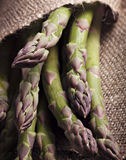 Fresh hand picked asparagus Stock Images