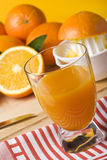 Fresh handmade orange juice Stock Image
