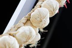 Fresh hanging garlic Royalty Free Stock Photo