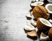 Fresh hard coconuts. Royalty Free Stock Photography