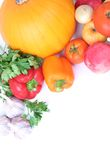 Fresh harvest Royalty Free Stock Photography