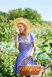 Fresh harvest Stock Images