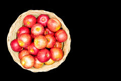 Fresh harvest of apples in basket Royalty Free Stock Images