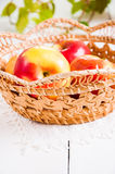 Fresh harvest of apples. Nature fruit concept. Stock Photos
