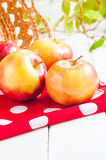 Fresh harvest of apples. Nature fruit concept Stock Photos