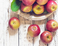 Fresh harvest of apples.Nature fruit concept. Stock Images