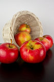 Fresh harvest of apples. Nature theme with red grapes and basket Royalty Free Stock Photos