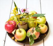 Fresh harvest of apples Royalty Free Stock Photo