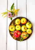 Fresh harvest of apples Royalty Free Stock Image
