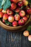 Fresh harvest of apples Royalty Free Stock Photography