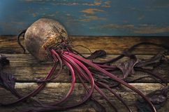 Fresh harvest of beets on a wooden background in dark tones. Close-up Stock Photos