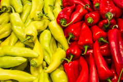 Fresh harvest of green and red peppers Stock Image