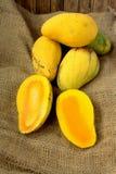 Fresh harvest mango Royalty Free Stock Images