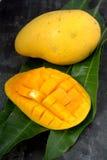 Fresh harvest mango Royalty Free Stock Photo