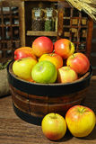 Fresh harvest of organic farm green and red apples Stock Photo
