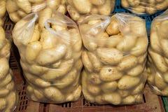 Fresh harvest of potatoes in ten kilo bags Royalty Free Stock Image