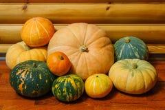 Fresh harvest of pumpkins stock photo