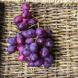 Fresh harvest of red grapes Royalty Free Stock Images
