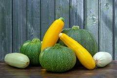 Fresh harvest of three kinds of courgettes royalty free stock images