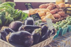 Eggplant, yams and brussel sprouts for sale in baskets at the farmer`s market for fall harvest stock photography