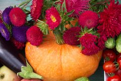 Fresh harvest vegetables ,fruits and flowers Astra Royalty Free Stock Photo