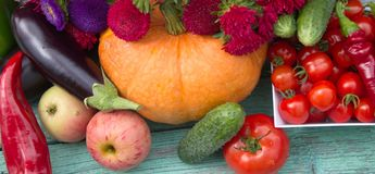 Fresh harvest vegetables ,fruits and flowers Astra Stock Images