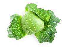 Fresh harvested cabbage with the outer most leaves Stock Photography