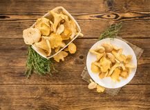 Fresh harvested Chanterelles on a wooden table. As detailed close-up shot Royalty Free Stock Photos