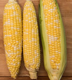 Fresh harvested corn on the cob. Freshly harvested corn on the cob sitting on a wooden background Stock Photography