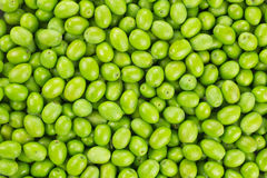 Fresh Harvested Green Olive pattern texture Stock Photo