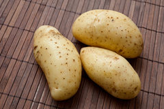 Fresh harvested potatoes. Stock Photos