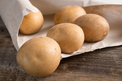 Fresh harvested potatoes Stock Image