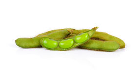 Fresh harvested soybean (edamame) plant isolated on white backgr Royalty Free Stock Image