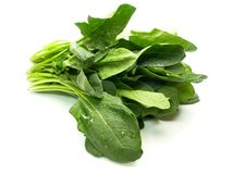 Fresh harvested spinach isolated on white royalty free stock photography