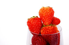 Fresh harvested strawberries in champagne glass Stock Image