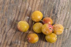 Fresh harvested yellow mirabelle plums on wooden floor top view Stock Images
